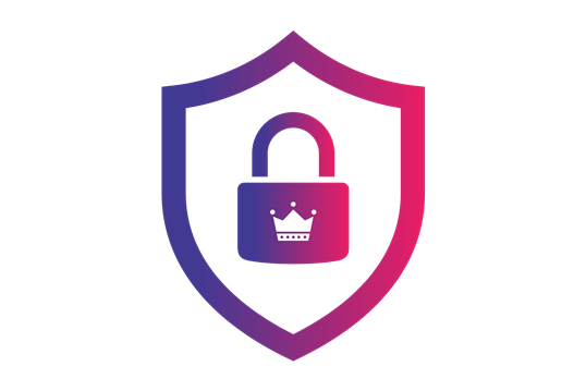 Shield Premium icon